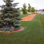 brown concrete landscape curbing